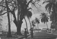 Conakry, un coin de la corniche et du port