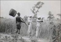 Chasseurs et indigène à Fort-Archambault en 1937. – La savane giboyeuse du sud du Tchad est très propice à la chasse. C'est d'ailleurs une activité particulièrement prisée des coloniaux, à la fois pour se fournir en viande, et le cas échéant en ivoire et en trophées, mais aussi comme loisir. Les plus fines gâchettes locales s'affrontent même à l'occasion de concours de tir, organisés lors des fêtes de la colonie, notamment au 14 juillet. La réputation de la région dépasse progressivement ses frontières et le tourisme cynégétique se développe dès la fin des années 1930, attirant des amateurs de gros gibier venus d'Europe. En 1947, l'activité est promue à Fort-Archambault avec la construction d'un établissement destiné à accueillir ces visiteurs, l'Hôtel des chasses. Dès cette époque, la grande chasse a aussi ses adversaires, et le roman « Les racines du ciel » de Romain Gary, paru en 1956, met en scène un farouche opposant à la traque systématique des éléphants de la région. En fait, la chasse sportive va se maintenir jusqu'au milieu des années 1970, avant de régresser en raison de l'instabilité de la situation politico-militaire tchadienne mais aussi du déclin inexorable des stocks de gibier.