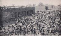 Zinder, le convoi de ravitaillement au départ. – Le ravitaillement des postes administratifs et militaires, éparpillés sur le vaste territoire de l'actuel Niger, était une affaire complexe au tout début du Xxème siècle. Les distances à franchir, avec des convois de chameaux, de bœufs-porteurs et d'ânes, étaient interminables et éreintantes, pour les hommes comme pour les bêtes. « Les longues étapes ruinaient les animaux. De plus ces grands voyages présentaient le grave inconvénient d'obliger les convois à emporter pour leurs bêtes de lourdes charges de mil, d'où abus de toutes sortes : villages évacués, habitants retirés dans la montagne, la lance à la main », raconte le Gal Gouraud, un pionnier du Niger dans ses mémoires (1). Une solution consista à créer des postes intermédiaires quand les distances étaient trop grandes, comme celui de Laham, implanté à mi-parcourt, pour couper en deux les deux cents kilomètres qui séparent Tahoua de Filingué. De plus, des secteurs de dimensions raisonnables furent institués, des bêtes et du personnel spécialement affecté à chacun. « Les convois ne marchent plus que sept jours chargés, après quoi ils reviennent à vide. Les escortes et les convoyeurs emportent leur mil mais trouvent la viande sur pied dans les postes. Ils ne doivent rien demander dans les villages », précise le général. Enfin, à partir d'août 1901, un officier responsable de l'organisation des convois est nommé. Le premier à endosser cette responsabilité fut  le capitaine Salaman. Sources : (1) Gouraud, Général, Zinder, Tchad - Souvenirs d'un Africain, Paris, Plon, 1944.