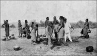 Autour d'un puits à Filinguè. 3ème territoire militaire du Soudan. – « La vague piste qui relie Filingué à Tahoua traverse une région plate et sablonneuse, dont la monotonie n'est rompue de loin en loin que par quelques arbres épineux et des affleurements ferrugineux ou argileux. Après les pluies, il s'y forme des mares peu profondes, qui par suite de leur large surface d'évaporation, sont vite asséchées. En quelques rares points comme Lahan, la nappe argileuse et imperméable a formé des cuvettes remplies de sable, où l'eau des pluies s'accumule. Mais il faut aller la chercher en creusant des puits à travers le sable. Naturellement la quantité d'eau recueillie par ces cuvettes et par conséquent le temps pendant lequel ces petits puits fournissent de l'eau, dépendent de la quantité d'eau de pluie tombée. […] Le capitaine Cornu part un jour de Filingué avec 45 tirailleurs et un convoi léger. Trompé par des renseignements indigènes, le petit détachement s'égare de erre dans la brousse pendant deux jours. Enfin Cornu retrouve la direction. Mais il ne lui reste que trente litres d'eau et il est encore à 20 kilomètres de Lahan. Cinq tirailleurs sont déjà morts de soir. Un autre et le guide devenus fous se sont jetés, le couteau à la main, sur la dernière peau de bouc. Faisant appel à l'énergie des meilleurs, Cornu se lance en avant. Après quatre heurs d'une marche atroce, il arrive enfin à la mare et trouve non pas de l'eau, mais du sable humide qu'il presse et dont il tire 50 litres d'eau en deux heures. Il les envoie aux malheureux dispersés sur sa route, ce  qui lui permet de les ramener un à un. En un  autre point 9 hommes sont ports au fond d'un puits par des émanations d'acide carbonique. » Source : Gouraud, Général, Zinder, Tchad - Souvenirs d'un Africain, Paris, Plon, 1944.
