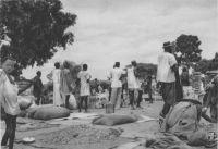 Niamey, le marché aux arachides