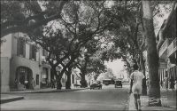 Dakar, les Allées Canard. - Henri Philibert Canard (1824-1894) était colonel de cavalerie. Il fut commandant de Gorée, puis gouverneur du Sénégal entre 1881 et 1883. – « On ne peut toucher à Gorée sans saluer en passant l'héroïque figure du commandant Canard, qui gouverne ce petit établissement. Depuis près de trente ans, le brave officier n'a pas quitté le Sénégal ; c'est l'incarnation, sur cette terre, de l'originalité et de la bravoure française. On ferait un volume avec ce qu'on nous a raconté de lui à Dakar. Le Sénégal a encore besoin pendant longtemps d'un homme d'action. Pourquoi ne l'enverrait-on pas à Saint-Louis ? c'est l'homme qui connaît le mieux le Sénégal, et on ne saurait trouver un plus digne successeur de Faidherbe » (1). « Dakar, juillet 1883. […] Ces jours derniers, le Colonel Canard, Gouverneur du Sénégal, vint inspecter Dakar et il honora la batterie d'une visite. Cette batterie est un fort situé à la pointe de Dakar. […] Donc, le colonel Canard s'en vint à la batterie, mais en vieux malin, au lieu de venir par l'entrée, comme tout le monde, il grimpa par le talus, de pente assez raide ; il était suivi par un capitaine d'artillerie, par notre capitaine, par son officier d'ordonnance et par ton serviteur. Ce qui suit est assez rabelaisien. Mais je n'y puis rien ; le colonel aperçut nombreuses, ce que les troupiers appellent des sentinelles (la batterie n'a pas de w.C.) et en fit la remarque au capitaine assez brutalement. Ce dernier très embêté insinua que les Noirs devaient être coupables, mais le colonel répondit : « Les Noirs ne se servent pas de papier », puis satisfait d'avoir démontré sa perspicacité, il acheva de grimper et l'incident n'eut pas de suites… » (2). La rue Canard, aussi appelée allées Canard, fut initialement baptisée, par le gouverneur Pinet-Laprade, rue d'Arlabosse, du nom d'un missionnaire, préfet apostolique du Sénégal de 1845 à 1848. Elle devint rue Canard en 1888, avant de changer à nouveau de nom en 1979, pour s'appeler