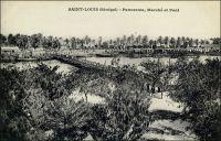 Saint-Louis, panorama marché et pont. – Il s'agit ici du pont de Guet N'Dar sur le petit bras du fleuve Sénégal. « La ville de Saint-Louis est bâtie sur une langue de sable, qu'on peut à la rigueur appeler une île, située presque au point de départ de deux bras du fleuve Sénégal, à environ douze mille de son embouchure. Cet îlot atteint à peine trois kilomètres de long, sur une largeur qui n'excède pas deux cents mètres ; sur toute l'étendue de la ville règnent des quais ou maçonneries bâtis sur pilotis. […] Saint-Louis communique par deux magnifiques ponts à la terre ferme, le pont fixe de Guet N'Dar sur le petit bras, et le pont de bateau mobile sur le grand bras, appelé pont de Sor. Des batteries bien installées défendent les approches de la ville de tous côtés, et une plantée à Guet N'Dar s'oppose à toute tentative de débarquement ». Source : Jacolliot, Louis, Voyage aux rives du Niger, Paris, C. Marpon et E. Flammarion, 1879.