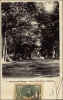 Casamance, avenue Forichon à Sedhiou - postée le 19.11.1906 - Forichon est capitaine français, tué à Sédhiou 21 mai 1891 par la résistance à l'autorité coloniale en Casamance.
