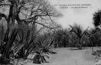 Dakar, jardin de Hann