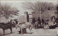 Djenné, indigènes apportant l'impôt – « Il y a vraiment dans notre civilisation coloniale africaine une harmonieuse entente entre deux races, que je n'ai jamais rencontrée ailleurs. Certes, les indigènes sont astreints à l'impôt. mais qu'est-ce en regard des contributions forcées des anciens tyrans, des razzias, des massacres collectifs, des exécutions en masse de jadis ? » (1). - La ville de Djenné, dans le cercle de Mopti, compte en 1948 une population de 1 Européen et 5450 Africains (2). – La carte postale est éditée par « H. Danel à Kayes ». Sources : (1) Morand, Paul, AOF De Paris à Tombouctou, Paris, éditions Flammarion, 1928.  (2) Guid'AOF, Dakar, Agence Havas AOF, 1948.