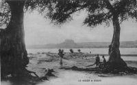 Le Niger à Gouni