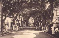 Porto-Novo, l'avenue Doumergue. – L'artère commerciale, située dans le quartier du marché, est le cadre historique des activités de négoce des familles libanaises. Celles-ci, arrivées à Porto-Novo vers 1885, venaient renforcer une communauté de commerçants alors essentiellement composée d'Afro-brésiliens et de portugais. Les nouveaux venus étaient des opérateurs relativement modestes, ne disposant pas de grandes concessions ni d'appontement sur la lagune. Ils bâtirent des constructions simples, en briques, où coexistaient boutique, entrepôt et logement. L'implantation de grandes firmes commerciales françaises, anglaises et allemandes, dont ils devinrent des distributeurs ou des sous-traitants, devait restreindre encore leur emprise économique sur la ville.